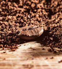 コーヒー大辞典